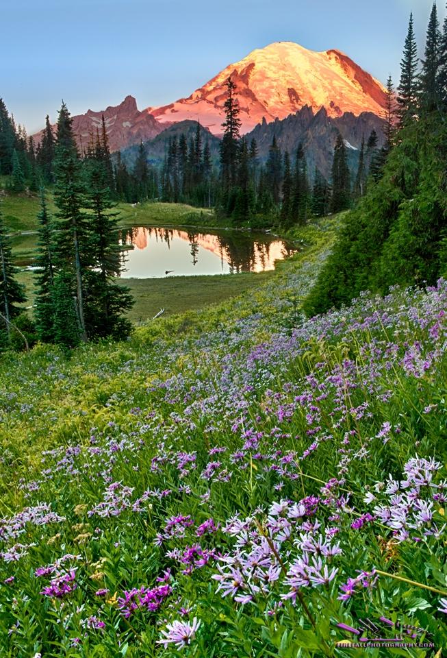 2017 08 26 Washington State 0884_HDR crop2