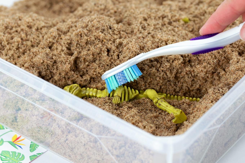 Excavating Dinosaur Bones With a Toothbrush
