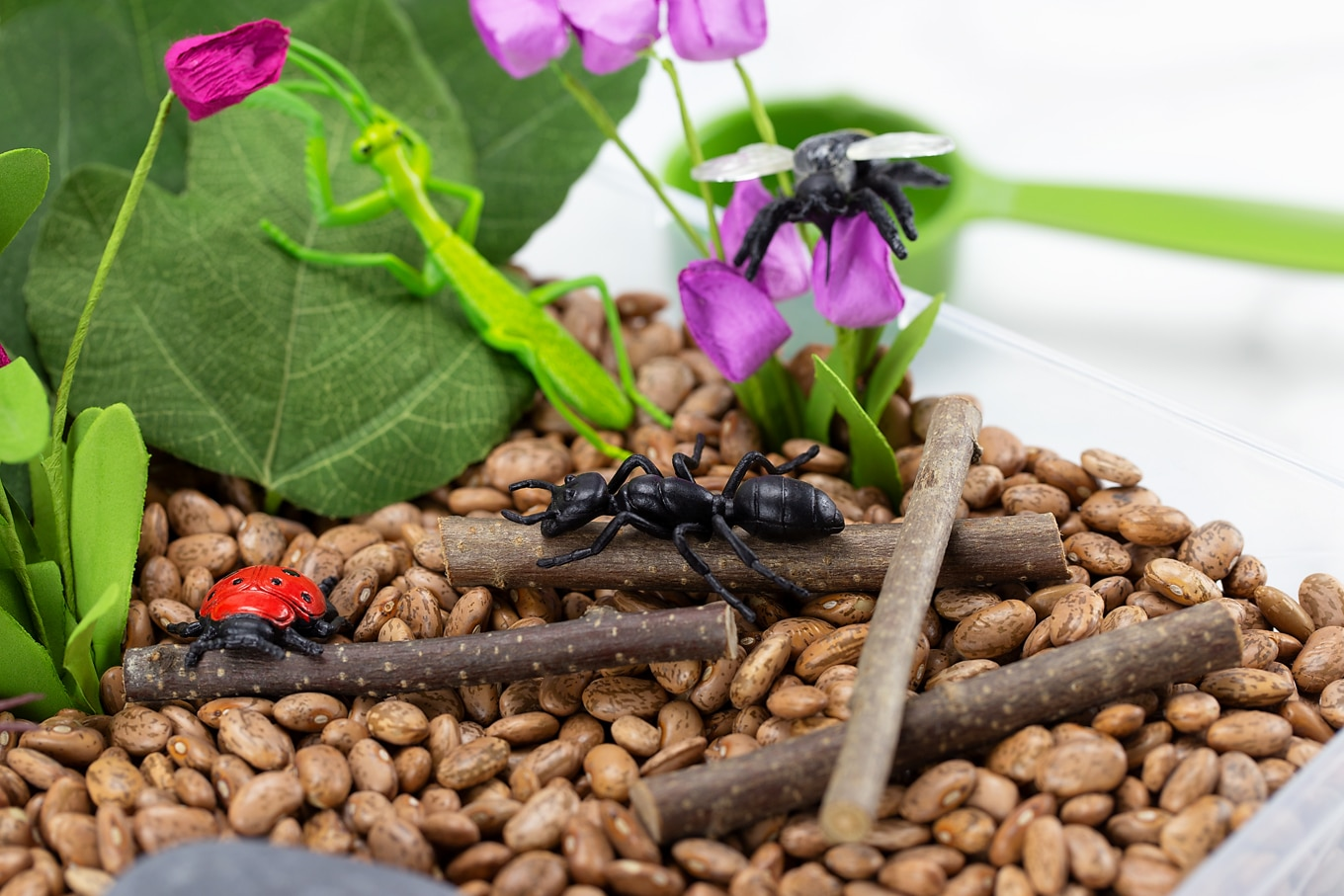 Bug Toys, Sticks, and Beans in Bug Sensory Bin