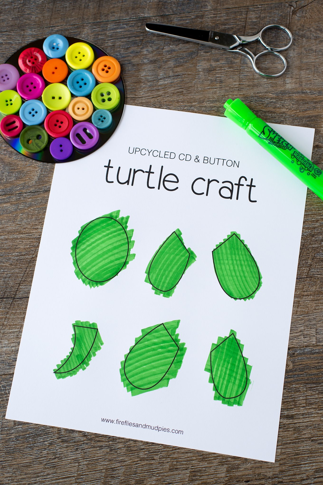 Turtle Template for Turtle Craft