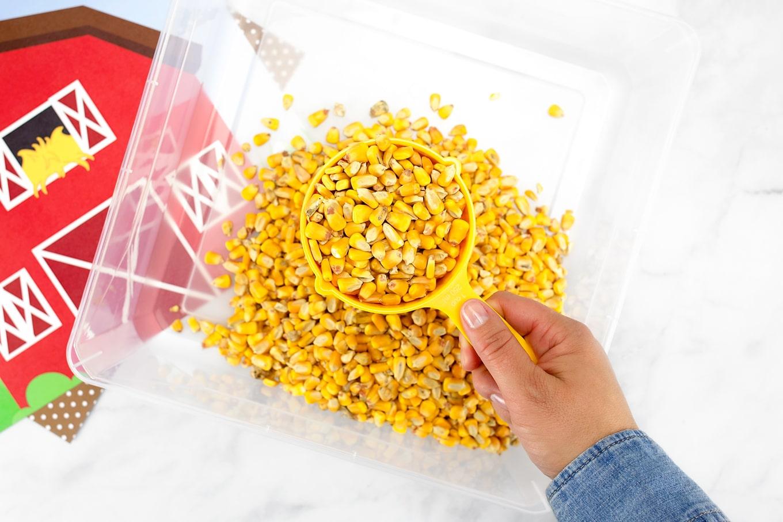 Feed Corn Sensory Bin
