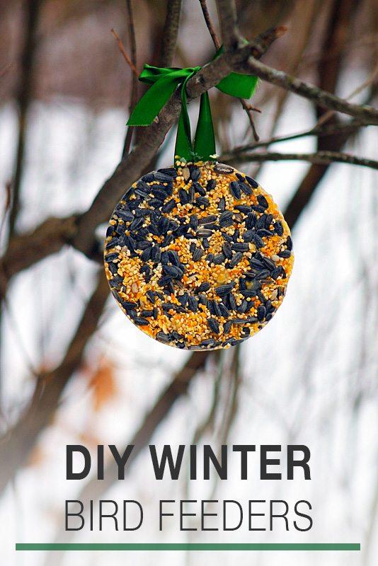 DIY Winter Bird Feeders | Fireflies and Mud Pies