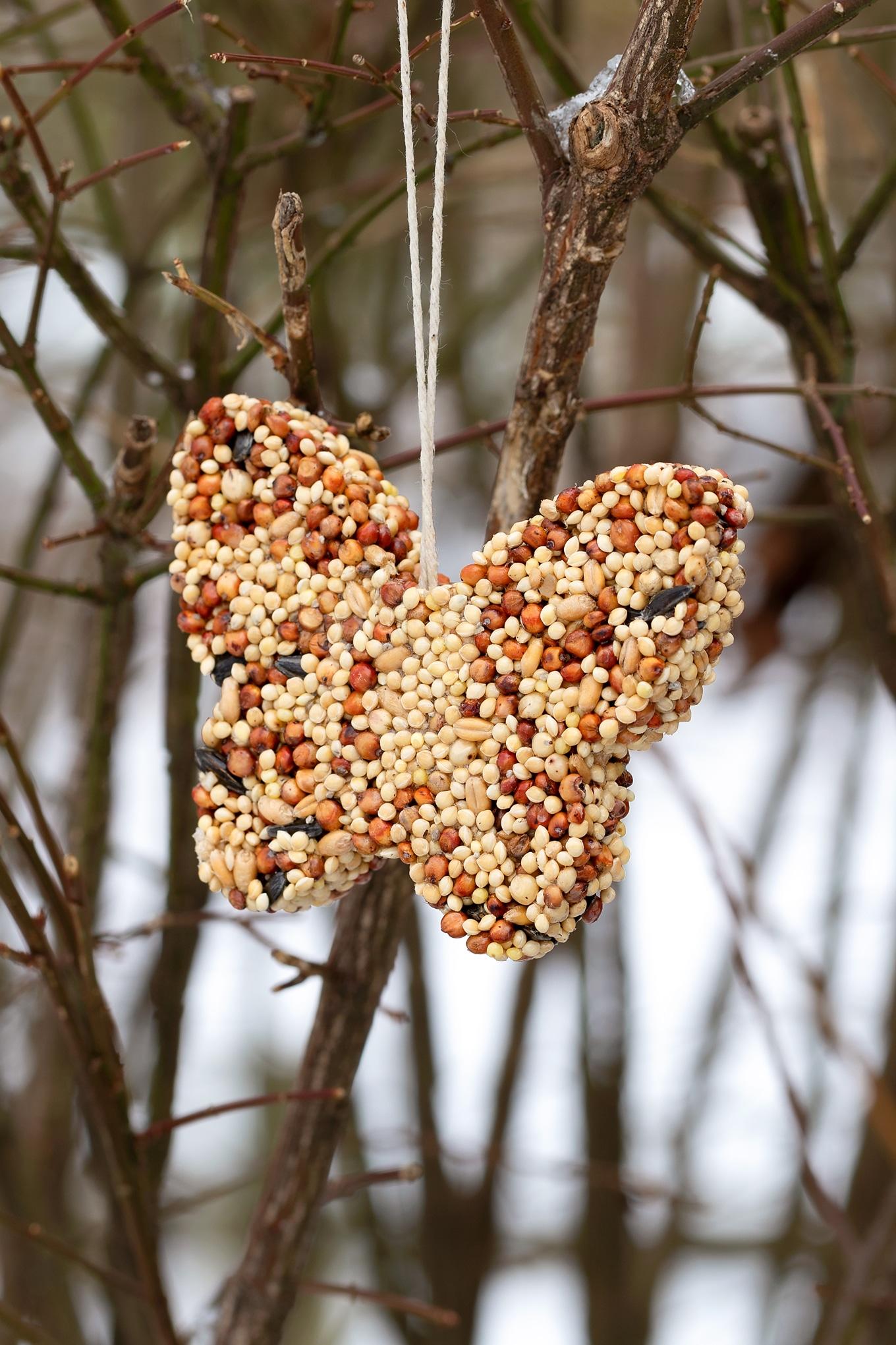 Butterfly Shaped Birdseed Ornament