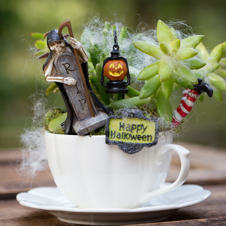 Make a Halloween Teacup Garden