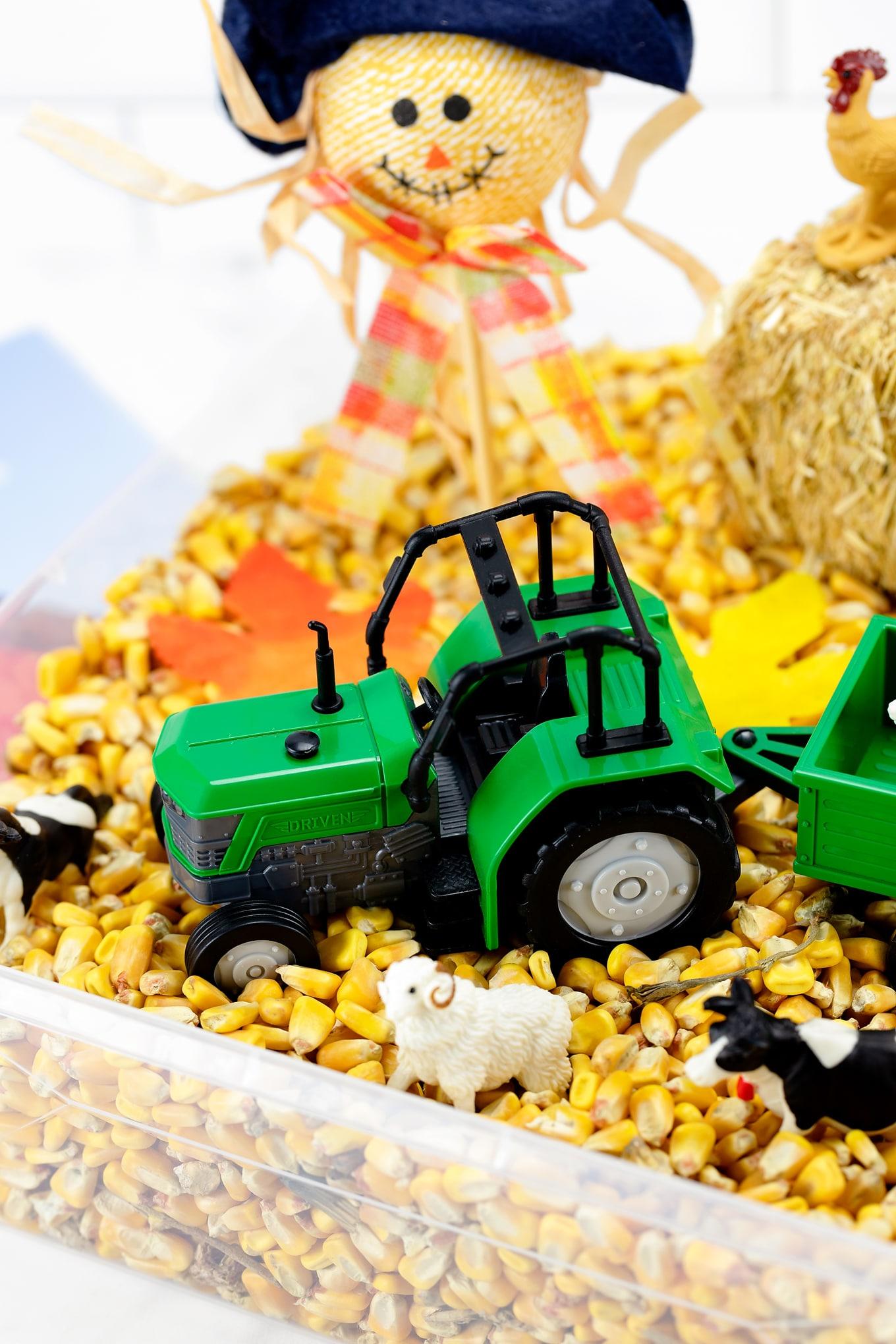 Harvest Sensory Bin for Kids