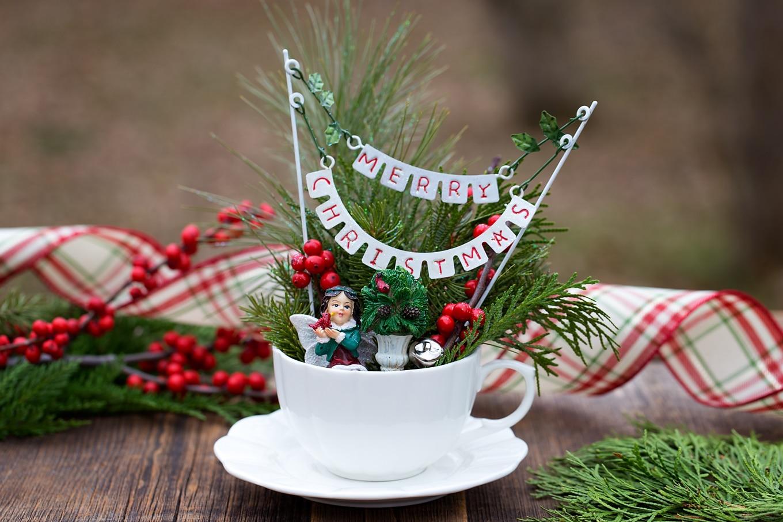 How to Make a Christmas Teacup Garden