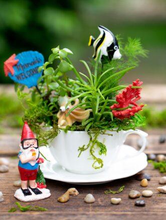 Under the Sea Teacup Garden