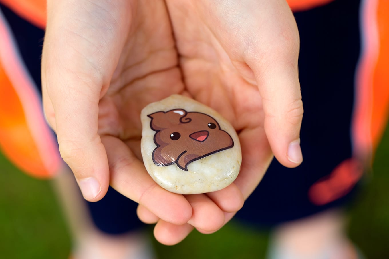 Hands Holding Poop Emoji Rock