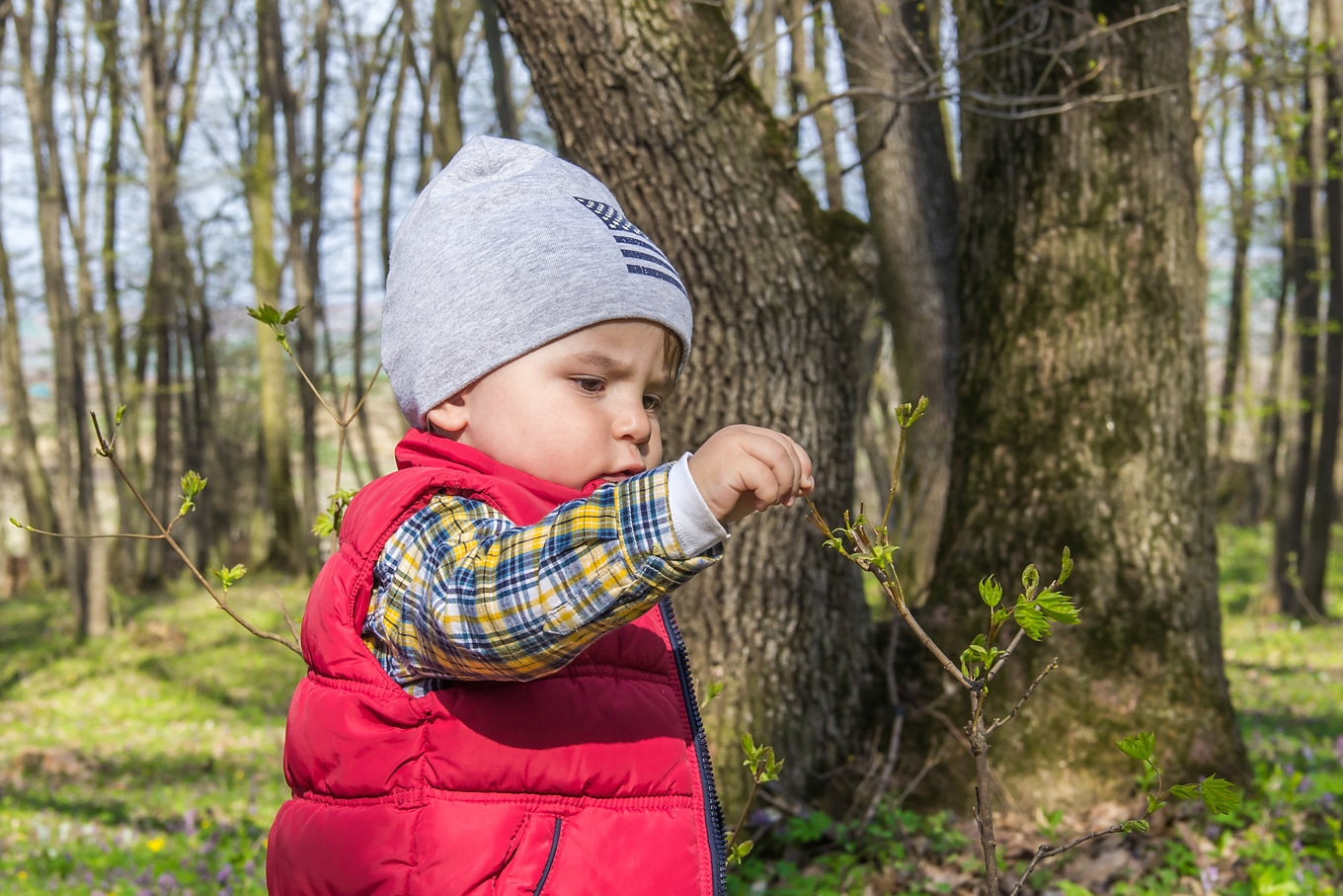 Child Examining a Leaf on a Nature Walk