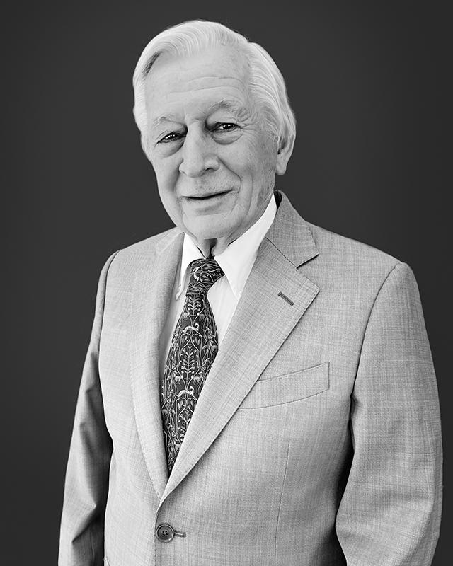 Ing. Marco Guazzini