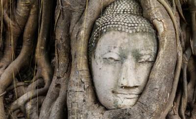 Mindfulness Joseph Goldstein