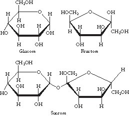 Mr. Lias, Science
