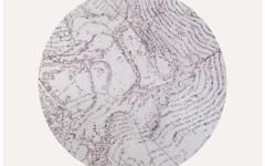 Syracuse, il mondo naturale visto da Caterina Sbrana
