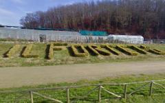 Toscana: la Regione aiuterà le vittime del Forteto ad uscire da quell'esperienza