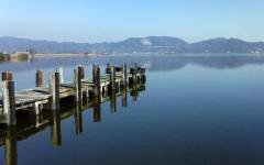 Lago Massaciuccoli, le piante diventano spazzini