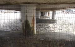 Forte dei Marmi, per il Pd:«Il pontile va recintato»