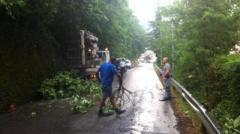 Maltempo cadono alberi e piante in Toscana