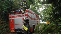 Alberi pericolanti a Pisa, intervento dei vigili del fuoco