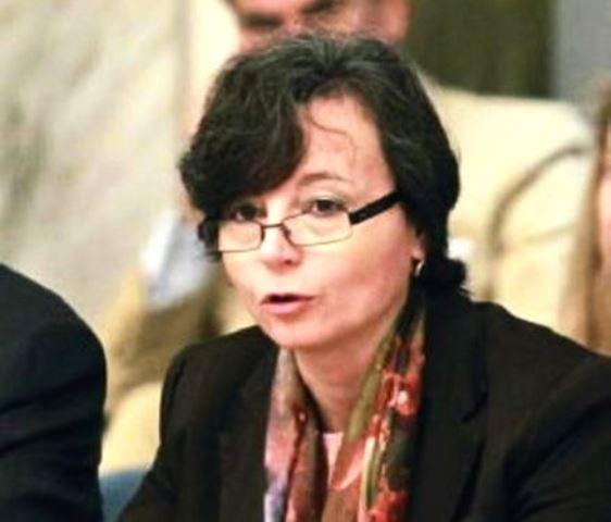 Il ministro dell'Istruzione Carrozza