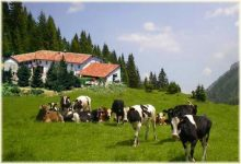 Toscana, terra di agriturismo