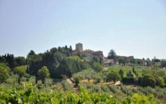 Coldiretti, VIP stranieri contadini in Italia