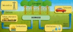 Come funzionano le biomasse (tratto da Bioenery blog)