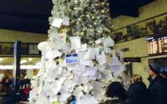 Dopo Natale resta l'albero della speranza