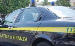 Falsi cachemire con peli di topo, 14 denunce a Livorno