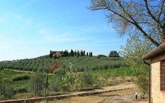 Toscana, agricoltura come argine contro la crisi