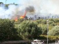 Ancora a fuoco la macchia mediterranea a Castiglione della Pescaia
