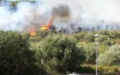 Castiglione della Pescaia: incendio sulla panoramica, chiusa per un'ora