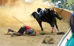 Pistoia, dopo la morte dei due cavalli Giostra dell'Orso sospesa per un anno