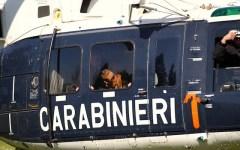 Carabinieri: in azione i bloodhound, detectives a quattro zampe della squadra speciale