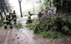 Nubifragio in Mugello, boy scout salvati dai Vigili del Fuoco