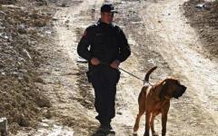 Arezzo, Guerrina scomparsa dal 1 maggio: la cercano i cani molecolari. Unico indagato il parroco congolese