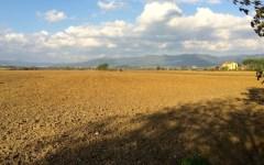 Regione Toscana: ai giovani contadini 270 ettari di terreni assegnati dalla Banca della Terra