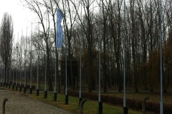 Birkenau, Il pennone con il vessillo che riproduce i colori della divise dei deportati