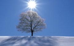 Meteo Toscana: dopo il sole della Candelora, arrivano freddo e neve. L'inverno continua