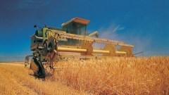Si avvicina la scadenza dell'Imu sui terreni agricoli