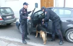 Prato, droga in centro: chiuso per un anno un negozio di via Santa Margherita