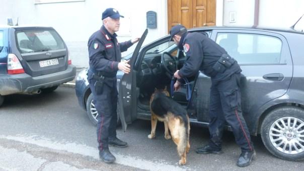 Carabinieri con cani antidroga