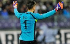 Europa League: Dinamo Kiev-Fiorentina (ore 21,05, diretta su Mediaset Premium) viola per vincere. Neto: problemi a un dito
