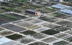 Pistoia, le ferite del maltempo: vivai e boschi in ginocchio. Reportage dall'elicottero della Forestale (VIDEO-FOTO)
