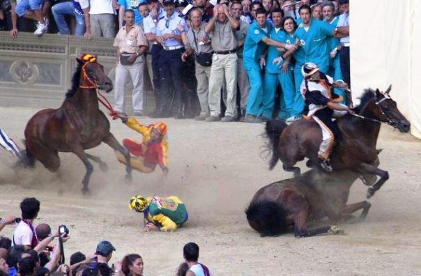 Palio di Siena, gli animalisti si preparano a protestare