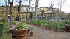 Il Giardino dei Semplici a Firenze