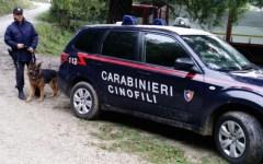 Firenze: a 12 anni litiga con la mamma, scappa e si accampa nel cortile della scuola