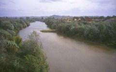Reggello (Firenze): pescano in Arno con rete di 40 metri. Romeni multati per 2.300 euro