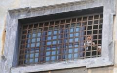 Firenze, Giubileo: il card. Giuseppe Betori permette alle suore di clausura di varcare le porte sante
