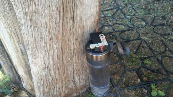 Falso allarme bomba vicino a Torre Pisa
