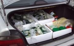 Viareggio: mozzarelle di bufala e salami (130 chili di alimenti) sequestrati dalla polizia stradale. Erano mal conservati